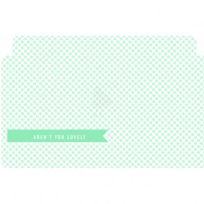 Amy Tangerine Yes Please Adhesive Vellum Pockets - Banner